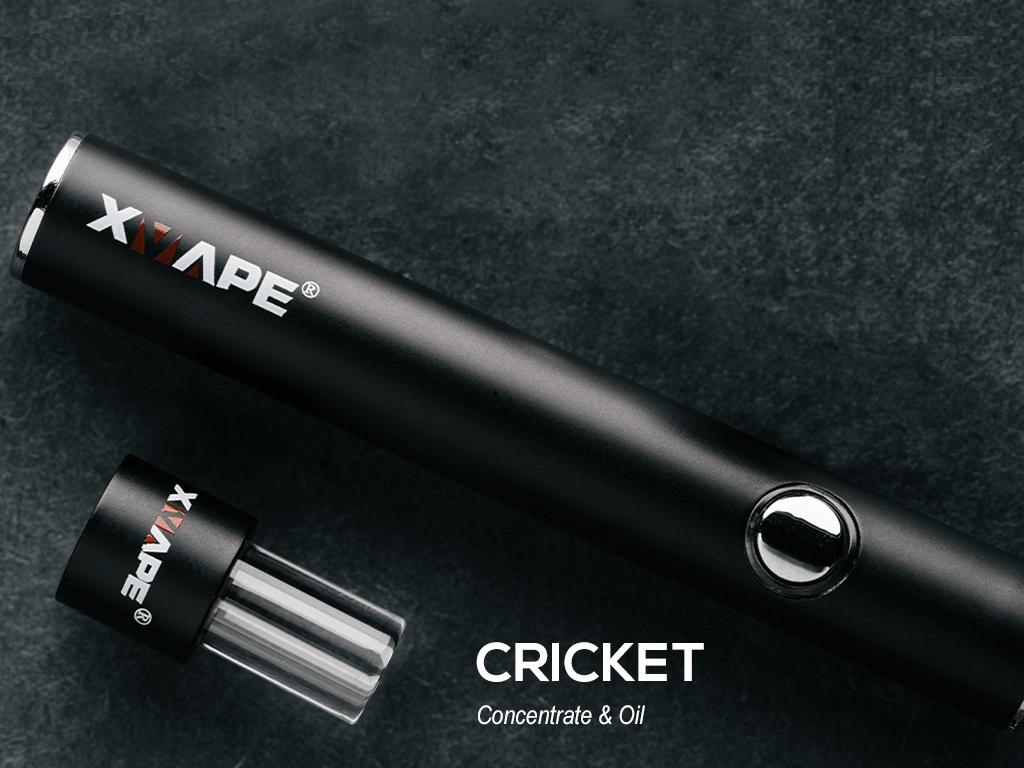Cricket-Tile-test